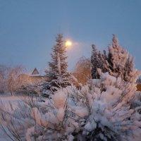 А ночью выпал снег ... :: Екатерина