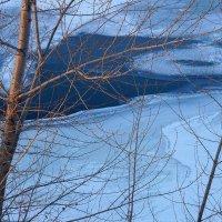 Зимнее убранство Енисея :: Екатерина Торганская
