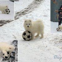 Футбол - игра захватывающая! ) :: Тамара Бедай