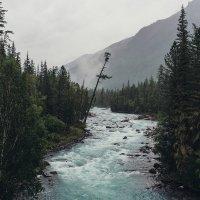 Алтай.Река Кучерла :: Кирилл Гудков