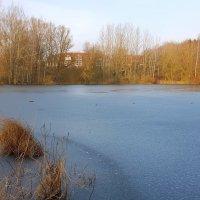 Подморозило на озере :: Валерий Розенталь