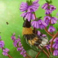 Пчёлка на вереске :: Анастасия Белякова