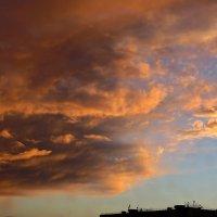 Краснодар. Вечернее небо :: Татьяна Смоляниченко