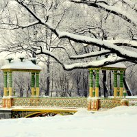 Зимой в Александровском парке  2 :: Сергей