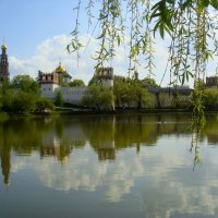 Новодевичий монастырь :: Irina ----