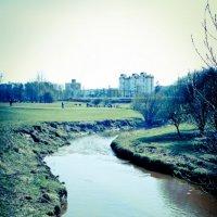 Муринский ручей :: Максим Тельнов