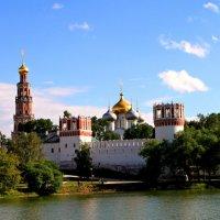 Новодевичий монастырь :: Лара Лаби