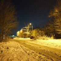 Ночь, улица, фонарь. :: Дмитрий Скубаков