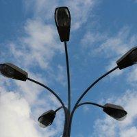 фонарь в парке Сокольники :: Анна К