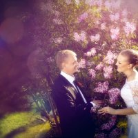 свадьба :: Евгений Осадчий