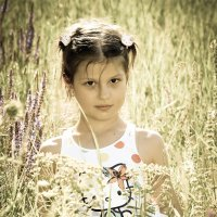Полевой цветочек.... :: Павел K