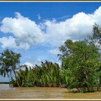 Меконг - жёлтая река жизни :: Евгений Печенин