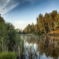 Утром на реке :: Олег Артамонов