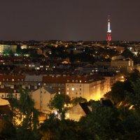 Вид с Вышеграда на Прагу :: Максим Марсов