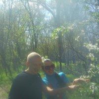 збор урожая лесных  цветов! :: вадим бэц