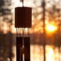закат :: Анастасия Ладыгина