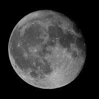 Луна :: Светлана Носкова