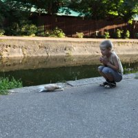 Мальчик и голубь :: Елена Головченко