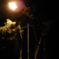 Ночная Одесса4 :: Repo4ka Репина