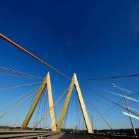 Мост Миллениум :: Елена Головченко