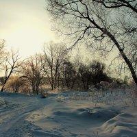 Зима :: Александр Лукин