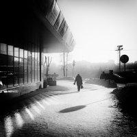 холод :: Илья Покровский