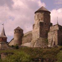 Старая крепость. :: Николай Сидаш