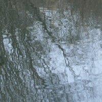 Немного солнца в холодной воде :: елена цыганова