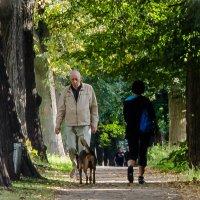 На прогулке в парке :: Людмила Финкель