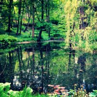болото :: Arty Кавун