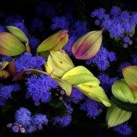 Осень :: Михаил Бибичков