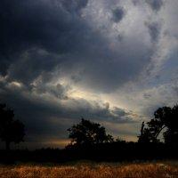 небо :: Александр Бодягин