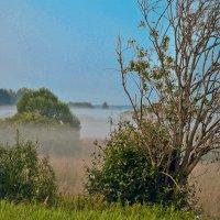 Ночной туман. :: Виктор Евстратов