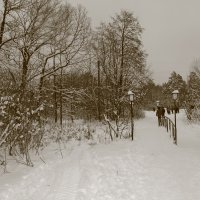Зимняя Йошкар Ола. Январь 2013года. :: Наталья Булдакова