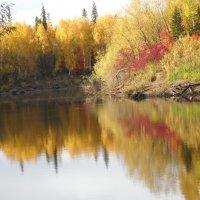 золотая осень :: Марина Власова