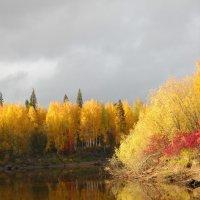 осень осень :: Марина Власова