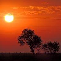 восход :: Люба Вылывана