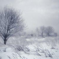 Зимний этюд :: Владимир Ноздрачев