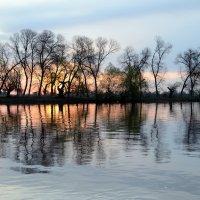 Рассвет на Волге. :: Геннадий Оробей