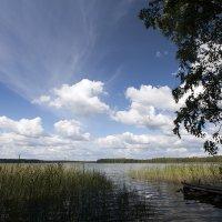 Озеро Падос (Карелия) :: Николай Тренин