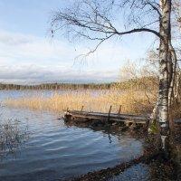 Озеро. :: Николай Тренин