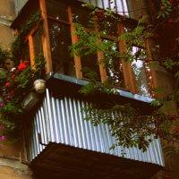 Прекрасный балкон!) :: Наталья Шкуропатова