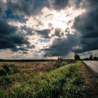 По дороге домой :: Maxim Rozhkov