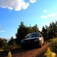 Подруга учится водить) :: Полина Николаева