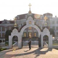 Белгород. Вербное :: Елена Грибакина