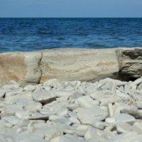 Камень :: Диана С