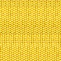 Бесконечная кукуруза. :: Анастасия Кононенко