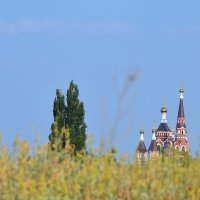 храм после критики :: Игорь Попов