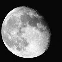 Луна :: Леонид Спектор