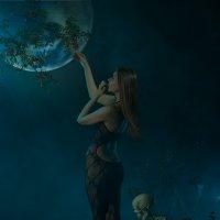 ashberry wish :: Kirill Alba